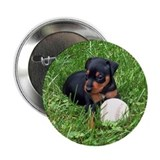 MIN PIN Button
