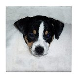 RAT TERRIER Tile Coaster