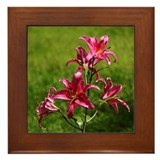 Pink Lily Framed Tile