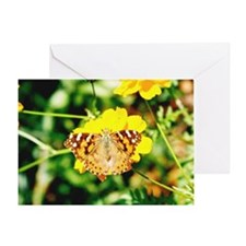 Marigold Butterfly - Greeting Card