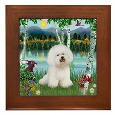 Bichon in the Birches Framed Tile