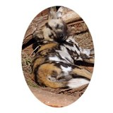 African Wild Dog Oval Ornament