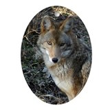 Ornaments Oval Coyote