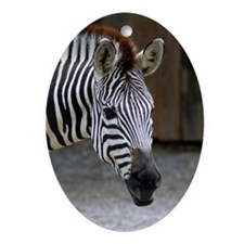 Ornaments Oval Zebra