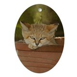 Oval Ornament Sand Cat