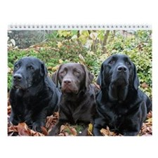Labrador Retriever Wall Calendar - Dark Chocolate
