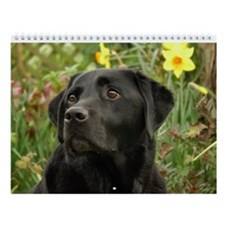 Just Labradors First Edition Special Wall Calendar