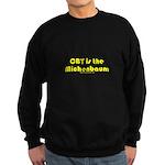 CBT is the Michenbaum Sweatshirt (dark)