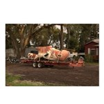 Flatbed Roadkill Postcards (Package of 8)