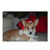 corgi corner Postcards (Package of 8)