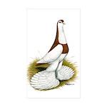 Australian Saddleback Pigeon Rectangle Sticker 50