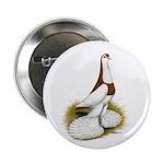 "Australian Saddleback Pigeon 2.25"" Button (10"