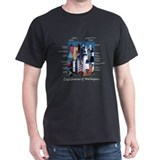 Lighthouses of Michigan T-Shirt