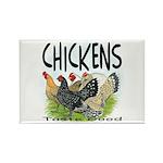 Chickens Taste Good! Rectangle Magnet