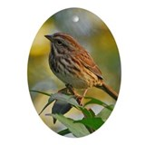 Cute Song birds Oval Ornament