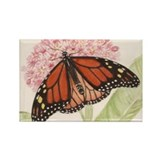Monarch Butterfly Magnet (10 pack)