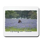 Imaginart Spring In Texas Mousepad