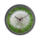 Anita's Allergies Wall Clock