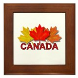 Canadian Maple Leaves Framed Tile