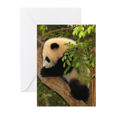 Giant Panda Baby 2 Greeting Cards (Pk of 10)