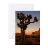 Greeting Card - featuring a Joshua Tree