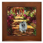 The Path - Keeshond (F) Framed Tile