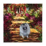 The Path - Keeshond (F) Tile Coaster