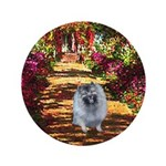 The Path - Keeshond (F) 3.5