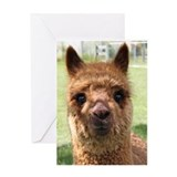 Funny Camelid Greeting Card