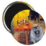 Cafe / Keeshond (F) Magnet