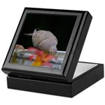 Mourning Dove Keepsake Box