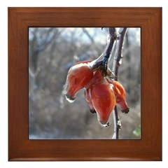 Winter Berries Framed Tile