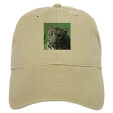 Leopard named Reno, Square Ph Baseball Cap