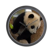 Panda Cub Square Photo Wall Clock