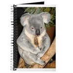 Koala Bear 3 Journal