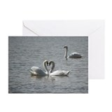 Stratford Swan Greeting Cards (Pk of 10)