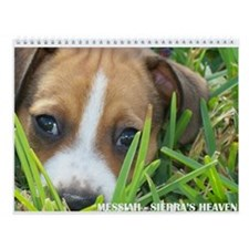 RAT TERRIER PUPPIES Wall Calendar