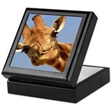Cute Animals in the wild Keepsake Box