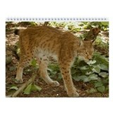 Siberian Lynx Wall Calendar