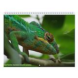 Madagascar Wall Calendars
