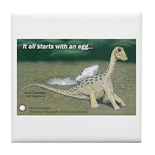 Giant Titanosaur Egg Tile Coaster