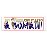 Somali cat Bumper Sticker (50 pk)