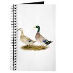 Ducks: Silver Welsh Harlequi Journal