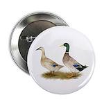"""Ducks: Silver Welsh Harlequi 2.25"""" Button (10"""