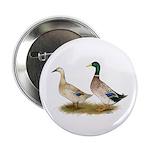 """Ducks: Silver Welsh Harlequi 2.25"""" Button"""