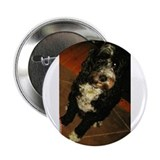 "Bad Puppy 2.25"" Button (10 pack)"