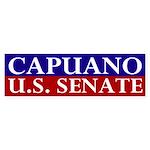 Mike Capuano for Senate bumper sticker