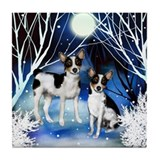 RAT TERRIER DOGS WINTER NIGHT Tile Coaster