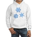 3-D Snowflakes Hooded Sweatshirt