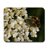 Yarrow Mousepad